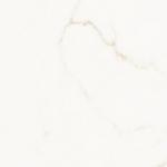 image–1275